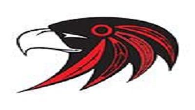 hawks resized